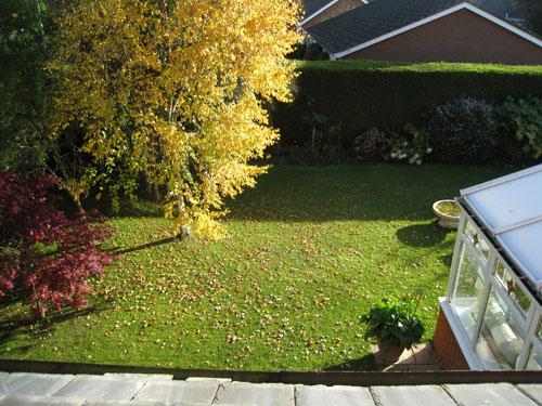 Herbert 的花園